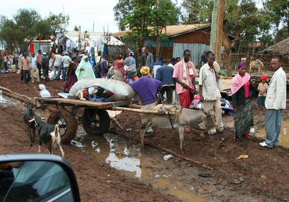 Market day in Ginir town, Oromiya, Ethiopia.