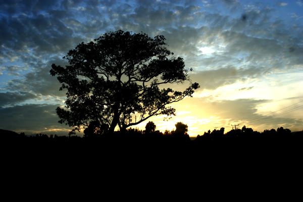 Oromiya sunset, Ethiopia.