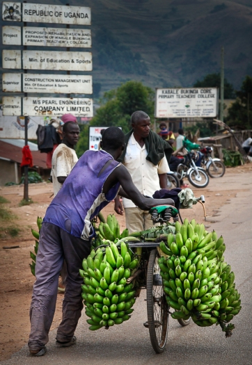 Matoke bike on the road to Kabale town, southwestern Uganda.